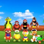 Diddy Kong Racing, le test sur DS